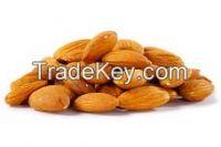 Almond Nuts, Betel Nuts, Brazil nuts, Cashew Nuts W240, and Walnuts, Nutmeg, Pistachio