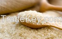 Exporters of Basmati and Non Basmati Rice