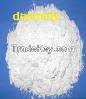 Quality 800 mesh dolomite powder
