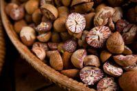 Best Betel Nuts