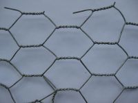 PVC Coated Rabbit wire mesh/chicken wire/ Hexagonal wire mesh From Direct Manufacturer
