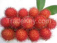 High quality rambutans from Vietnam