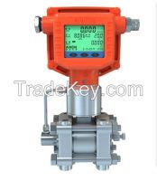 integrative multivariable DP flow meter ( transmitter )