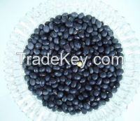 Black beans with resonable price