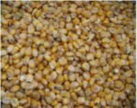 FEED WHEAT / FEED CORN / SUNFLOWER MEAL / SOYBEAN MEAL / SUGAR BEET PULP / SUNFLOWER HUSK