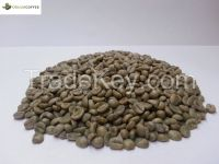 Arabica 100% Green Coffee Beans Specialty Grade and Premium quality