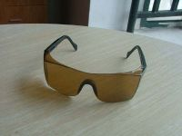safety glasses/safety goggle
