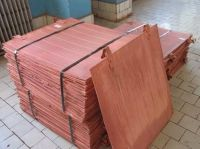 copper cathode steinweg