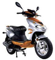 50cc / 125cc / 150cc