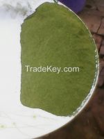 ORGANIC MORINGA SEEDS AND LEAF POWDER FROM MALAWI