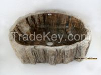 Fossil Wood Basins