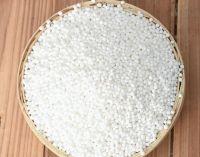 High Quality Sago Seeds / Tapioca Pearl Balls