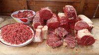 Frozen Halal Beef, Cow beef