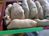 Beef offals: Frozen beef tripe, stomack