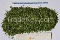 Freeze Dried Chive