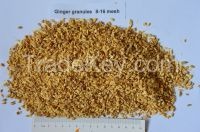 Dehydrated  ginger granules 8-16mesh