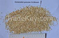 Dried horseradish granules 16-26mesh