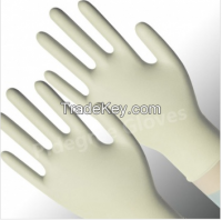 Disposable Stretchy Vinyl Glove-Poweder Free