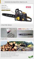 62.0CC Chain Saw chainsaw HQ-6200
