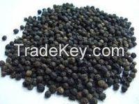 Black pepper in bulk wholesale