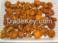 Natural Cow/ox/cattle Gallstones for sale