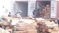 Kosso Wood - Pterocarpus