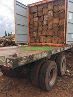 Kosso Wood - Pterocarpus Erinaceus
