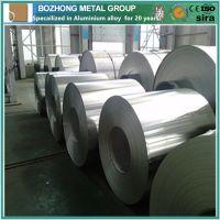 Best Recommend 5019 Aluminium alloy coil