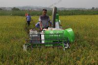 Factory Direct Mini Rice Harvester 20HP 4LZ-0.8