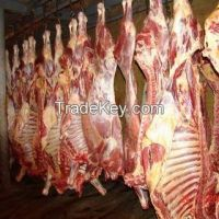 Frozen Beef Carcass Frozen Buffalo Meat, Hind Quarters, Fore Quarters, Offal, Tongue, Heart, Honey Comb, Knee Tendon, Tails etc.