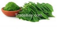 MORINGA LEAVESPRODUCT