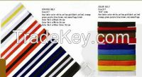 Taekwondo Color Belt