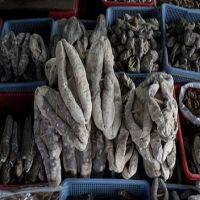 Fresh Dried Sea Cucumber Best Quality 95%