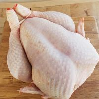 Halal Whole Frozen Chicken and parts