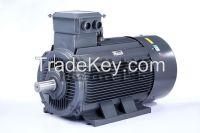 YE2 series (ip55) high efficiency three phase induction motor