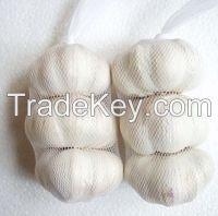 high quality fresh garlic price Pure White Garlic alho fresh garlic