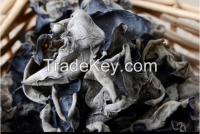 black mushroom Dried Black Fungus mushroom Dried mushroom wood ear