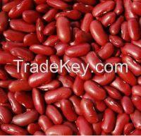 Quality White Kidney beans,Red and Black Kidney beans,Kidney beans.