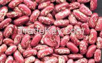 White kidney bean , speckled kidney beans, black & Red kidney beans.