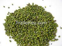 Green Mung Beans / Green Gram /Moong Dal.