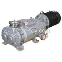 Lgb Series Variable Pitch Screw Dry Vacuum Pump