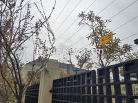 electric fencing; electric fence; security fence