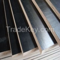 film faced plywood used for construction