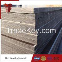 18mm Film Faced Plywood / Marine Plywood