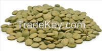 Dried Green Lentils