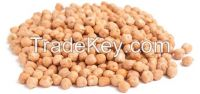 Chick Peas 40 / 42 for Spain