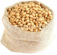 High Quality Soybean
