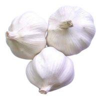 Purle White Fresh Natural Garlic