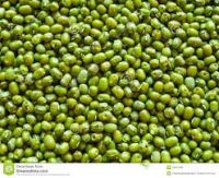 Green Grams