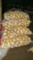 South African Fresh Potato
